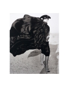 Isabella Blow in Kuwait, Donald McPherson,2001, Platinum Palladium Print,DC Editions
